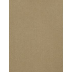 Stunning Tip Top Cashmere Fabric