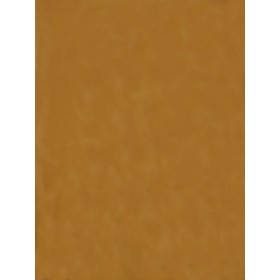 Alluring Topaz Butterscotch Fabric