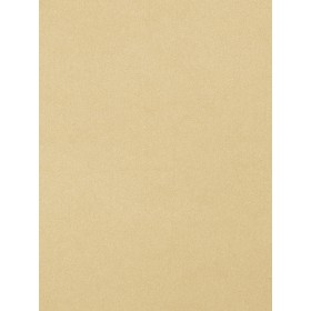 Fantastic Dimmer Putty Fabric