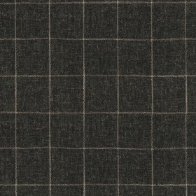 Concord Pane 408503 Sable Performance+ Fabric