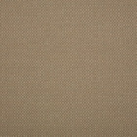 "54"" ACTION TAUPE  Fabric by Sunbrella Fabrics"
