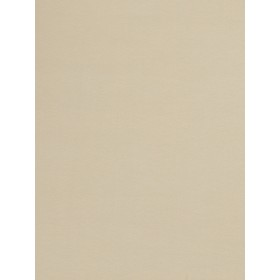 Outstanding 03045 Tan Fabric