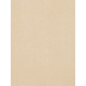 03270 Parchmnet Fabric