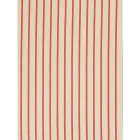 Special Caldwell Stripe Persimmon Fabric