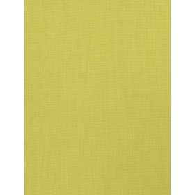 Exceptional Monterey Lime Fabric