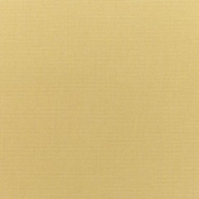 "54"" CANVAS WHEAT Fabric by Sunbrella Fabrics"