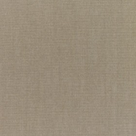 "54"" CANVAS TAUPE Fabric by Sunbrella Fabrics"