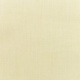 "54"" CANVAS VELLUM Fabric by Sunbrella Fabrics"