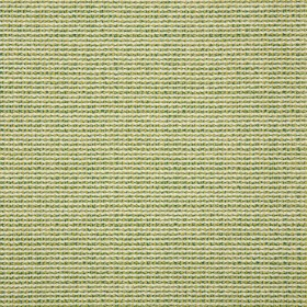 "54"" HYBRID LIME Fabric by Sunbrella Fabrics"