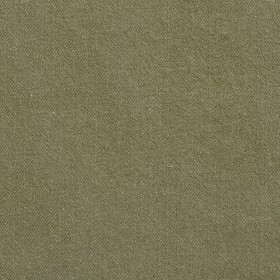 5670 Fern Fabric by Charlotte Fabrics
