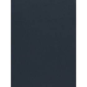 Special 02042 Navy Fabric