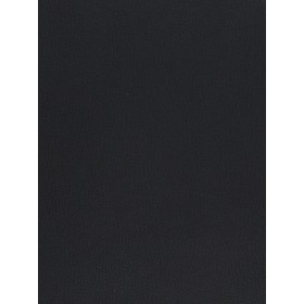 Exceptional 02042 Onyx Fabric