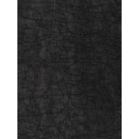 Special 02301 Onyx Fabric