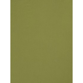 02900 Sprout Fabric