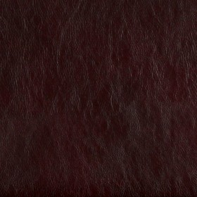 7476 Wine Fabric by Charlotte Fabrics