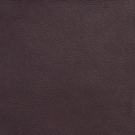 7511 Walnut Fabric by Charlotte Fabrics