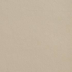 7515 Bisque Fabric by Charlotte Fabrics