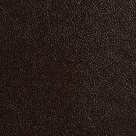 7545 Chocolate Fabric by Charlotte Fabrics