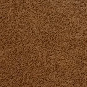 7575 Toffee Fabric by Charlotte Fabrics