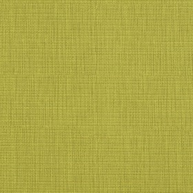 7603 Citrus Fabric by Charlotte Fabrics