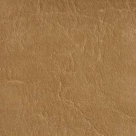 7618 Camel Fabric by Charlotte Fabrics
