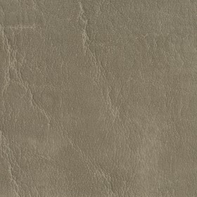 7620 Taupe Fabric by Charlotte Fabrics