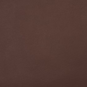 8095 Walnut Fabric by Charlotte Fabrics