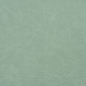 8100 Mint Fabric by Charlotte Fabrics