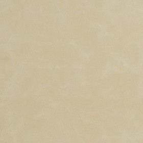 8240 Bisque Fabric by Charlotte Fabrics