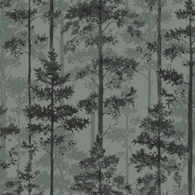 2928-8826 Pine Sage Silhouette Trees Wallpaper