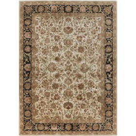 A116-811 Surya Rug | Ancient Treasures Collection