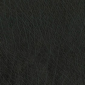 Abilene 9009 Black Fabric