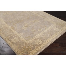 AIN1000-23 Surya Rug | Ainsley Collection