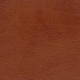 Allegro ALG 7065 Old Whiskey Fabric