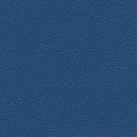 Allsport 3006 Royal Blue Fabric