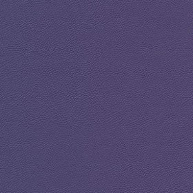 Allsport 3009 Bright Violet Fabric