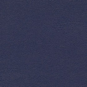Allsport 308 Electric Blue Fabric