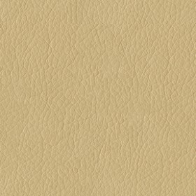 Amarillo 6003 Cream Fabric