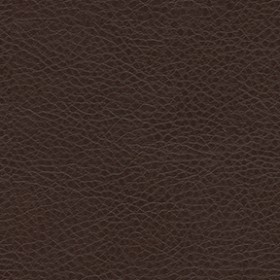 Amarillo 8020 Mahogany Fabric