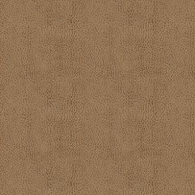 Austin 6010 Moccasin Fabric