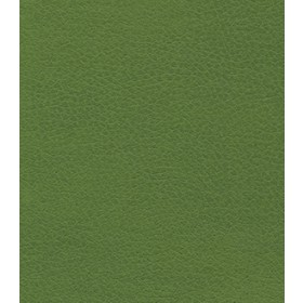 Brisa 4448 Apple Green Fabric