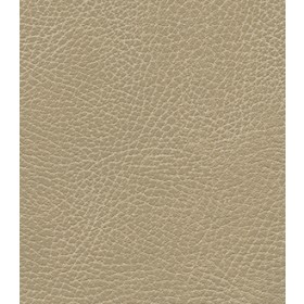Brisa Distressed 3340 Desert Tan Fabric