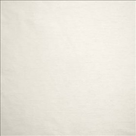 Complementary White Kasmir Fabric