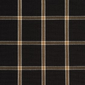 D138 Onyx Windowpane Fabric by Charlotte Fabrics