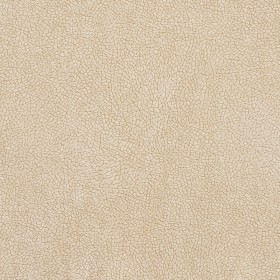 D568 Bisque Mosaic Fabric by Charlotte Fabrics