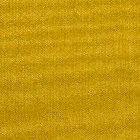 Dapper Turmeric Burch Fabric