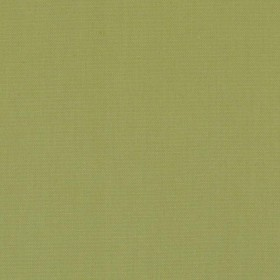 DK61731 213 Lime Duralee Fabric