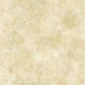 Key West Olive Coral Texture Wallpaper