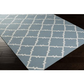FT229-811 Surya Rug | Frontier Collection