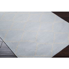 FT40-811 Surya Rug   Frontier Collection